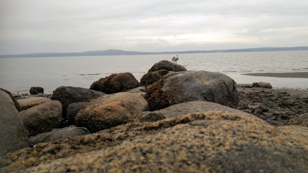 blog-slide-show-boulder-beach