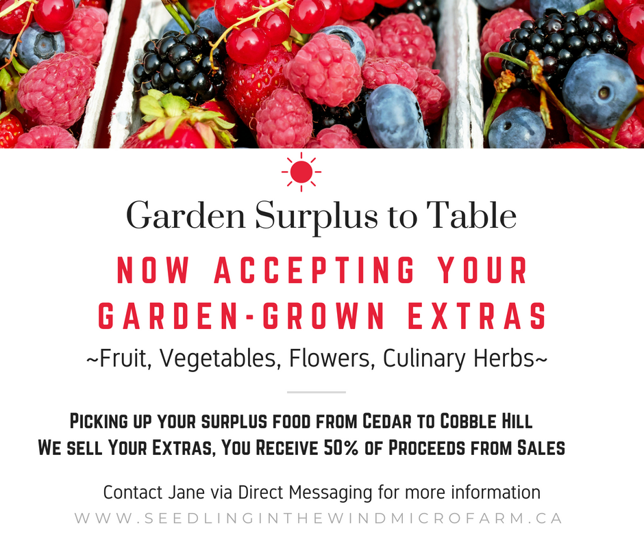 Garden Surplus to Table (11)